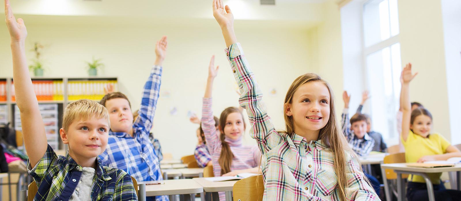 School Safeguarding Lockdown Solutions
